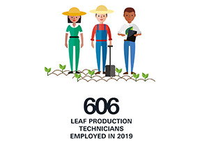 Leaf Production Technicians